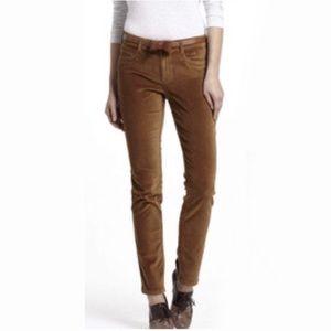 Pilcro Letterpress | Velvet Skinny Jeans Golden